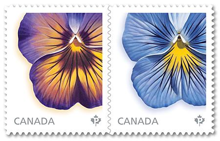 Pansies | Canada Post