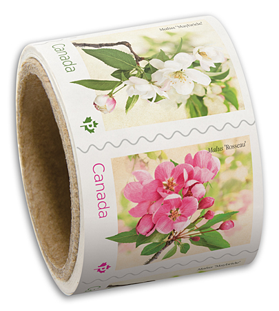 Coil of 50 stamps - Crabapple Blossoms