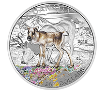 2016 $20 Pure Silver Coin - Baby Animals: Caribou
