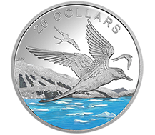 2017 $20 Pure Silver Coin - Glistening North: The Arctic Tern