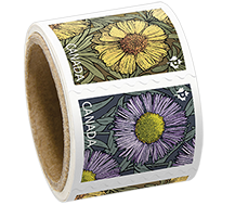 Domestic Stamps – Daisies