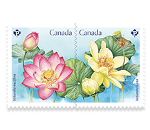 Lotus Booklet of 10 stamps