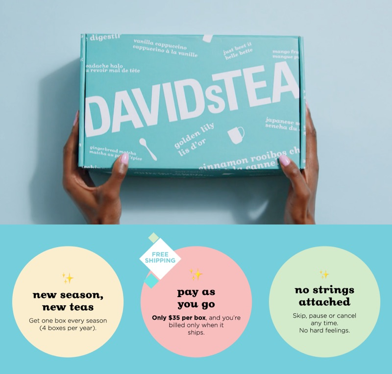 In a banner on the DAVIDs TEA website, a woman holds a DAVIDs TEA's subscription box.