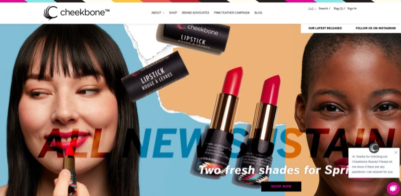 Cheekbone Beauty's website home page features new lip stain products.