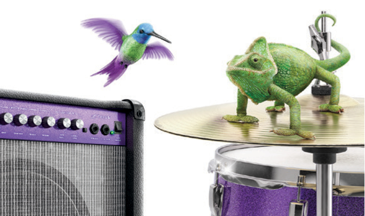Telus used masterful branding to evoke both nature and music.